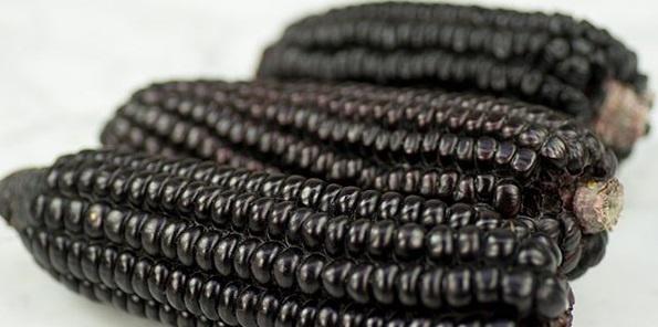 Где растет красная, синяя и черная кукуруза?