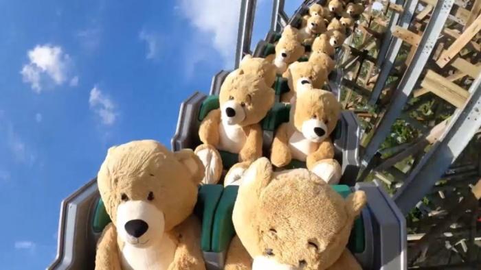 В Голландии в парке аттракционов на американских горках теперь катаются медведи