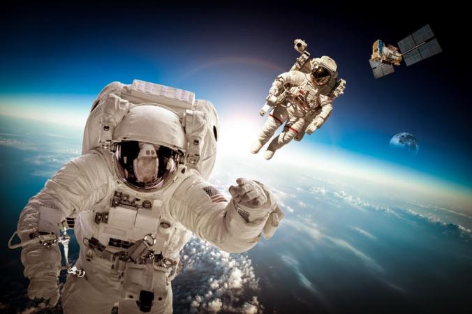Детенышей кальмаров отправили в космос. Но не для питания космонавтов