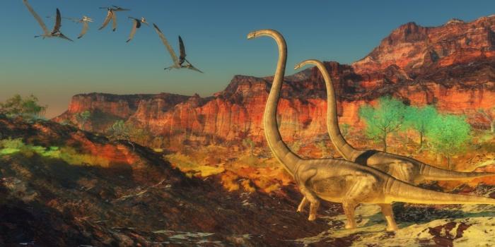 Знакомьтесь  с австралотитаном: еще один динозавр-гигант