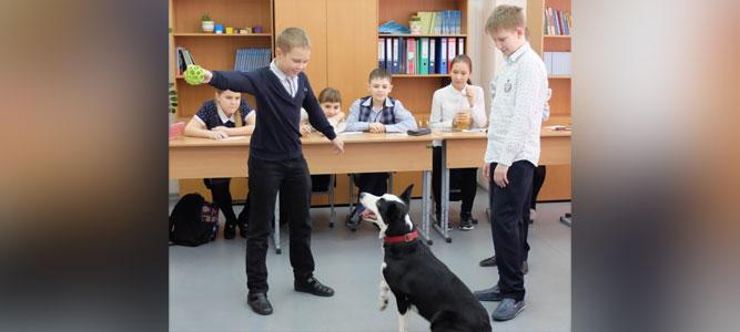 Собака вместо учебника