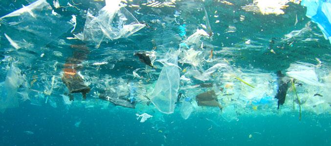 Океан мусора