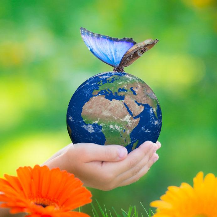 Дети со всего мира присылают свои проекты на Премию Росприроднадзора